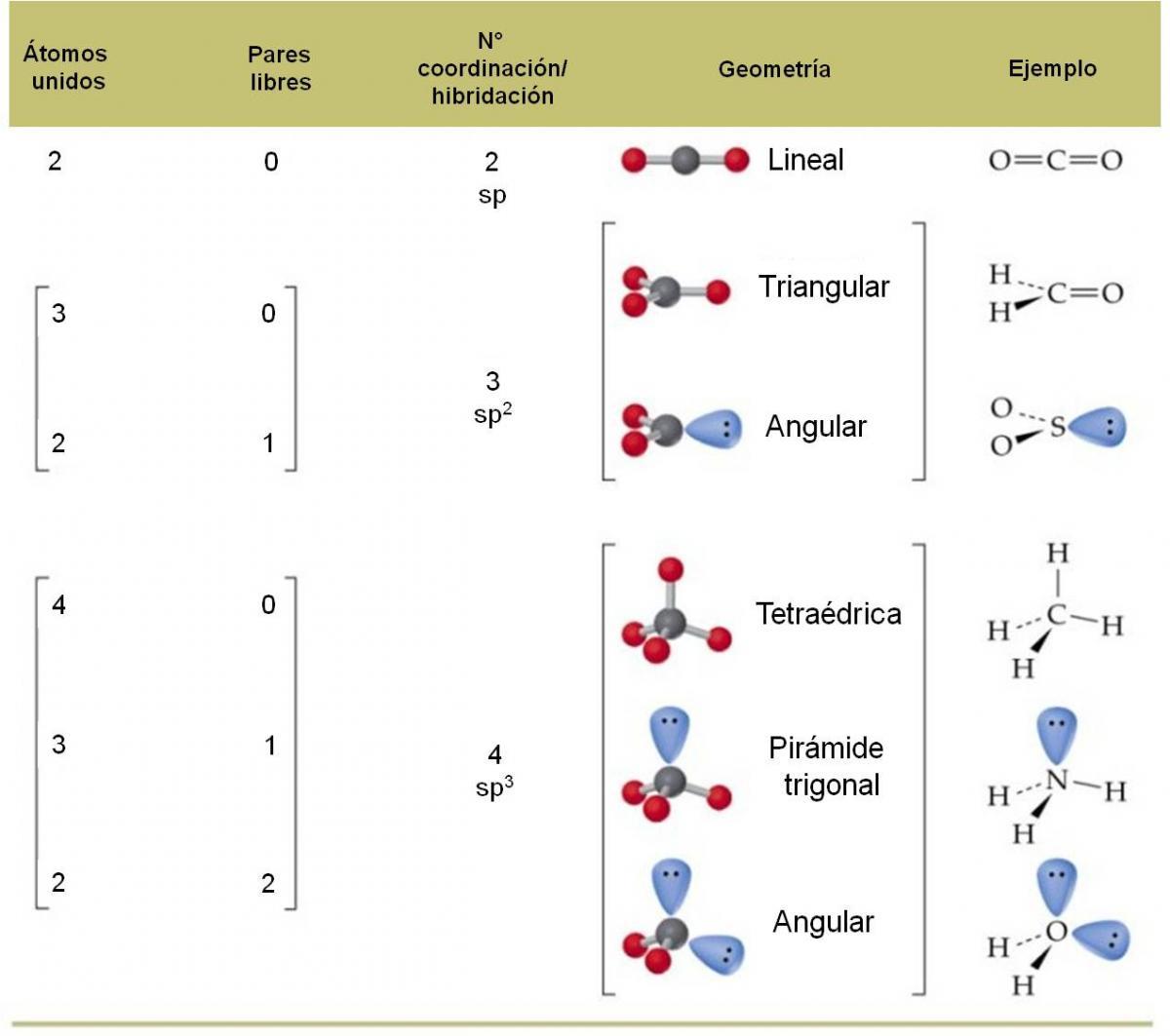 3 4 4 Geometría Molecular Teoría Rpecv Química General