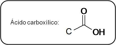 Imagenes de Los Acidos Carboxilicos Los ácidos Carboxílicos Poseen