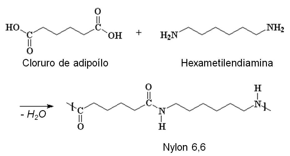 estructura base de los esteroides